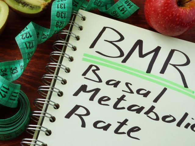 Things that reduce Metabolism (Basal Metabolic Rate )